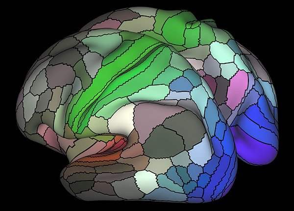 most-detailed-brain-map-yet-2